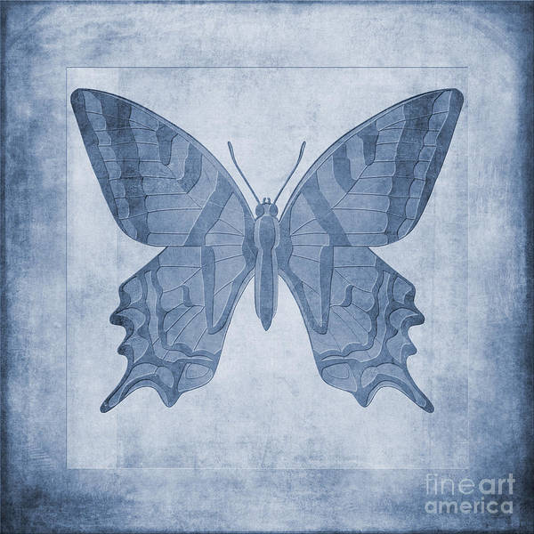 Fauna Digital Art - Butterfly Textures Cyanotype by John Edwards