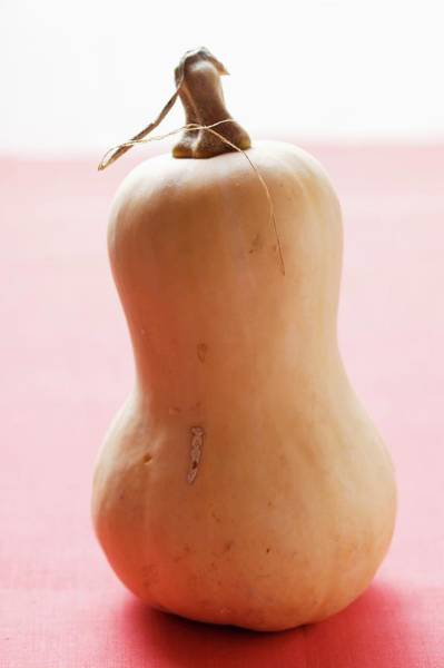 Vegies Photograph - Butternut Squash by Foodcollection
