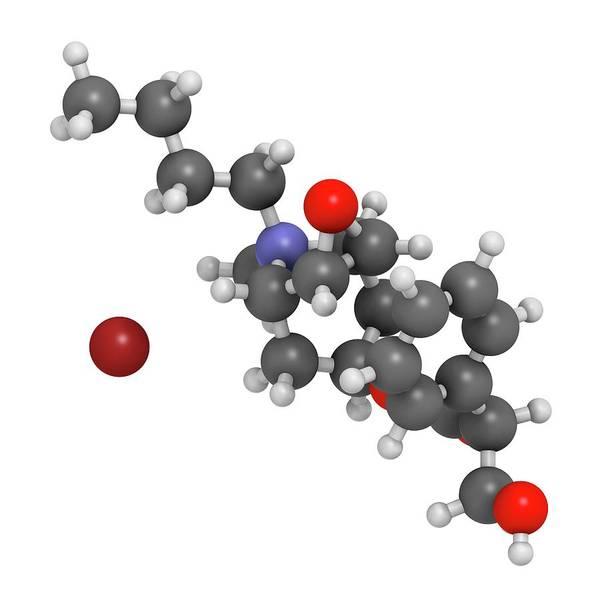 Pharma Wall Art - Photograph - Butylscopolamine Drug Molecule by Molekuul