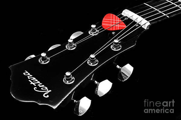Photograph - Bw Head Stock With Red Pick  by Andee Design