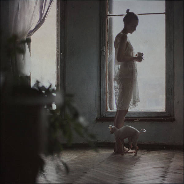 Wall Art - Photograph - By The Window by Anka Zhuravleva