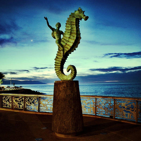 Photograph - Caballeo Del Mar by Natasha Marco