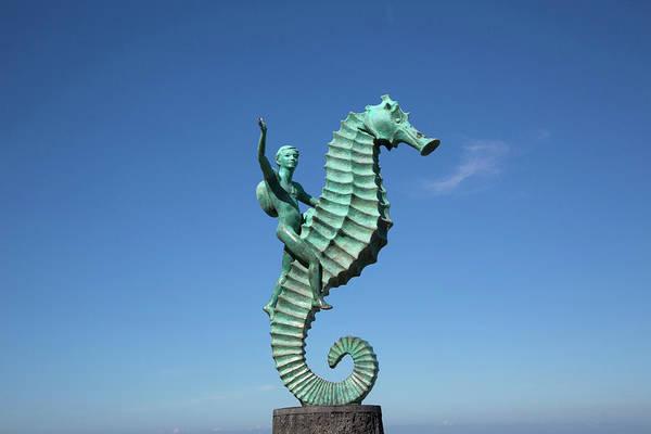 Jalisco Photograph - 'caballero Del Mar' (the Seahorse by Douglas Peebles