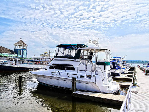 Photograph - Cabin Cruisers By Founders Park Alexandria Va by Susan Savad