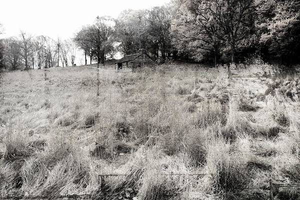 Photograph - Cabin In The Grasses by Alice Gipson