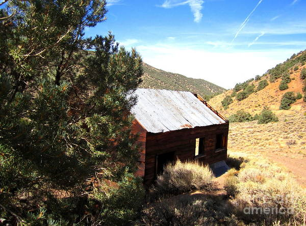 Bishop Hill Photograph - Cabin In The Hills by Marilyn Diaz