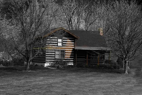 Photograph - Cabin In The Woods by David Yocum