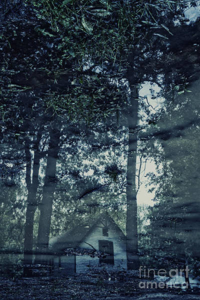 Mud House Photograph - Cabin In The Woods by Margie Hurwich