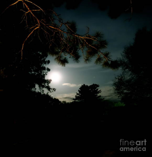 Photograph - Cabin Moon by Jacqueline Athmann