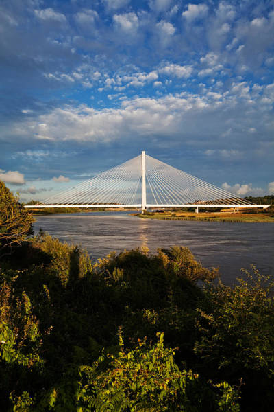 Suir Photograph - Cable-stayed Bridge Over The River Suir by Panoramic Images