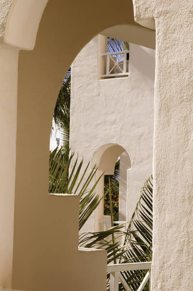 Photograph - Cabo San Lucas by Sherri Meyer