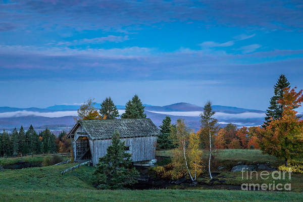 Photograph - Cabot In Blue by Susan Cole Kelly