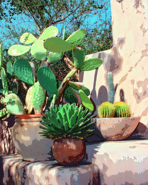 Mission Santa Barbara Photograph - Cactus Corner Palm Springs by William Dey