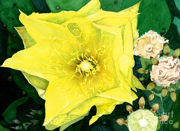 Wall Art - Painting - Cactus Flower by Barbara Jewell