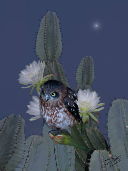 Digital Art - Cactus Owl by M Spadecaller