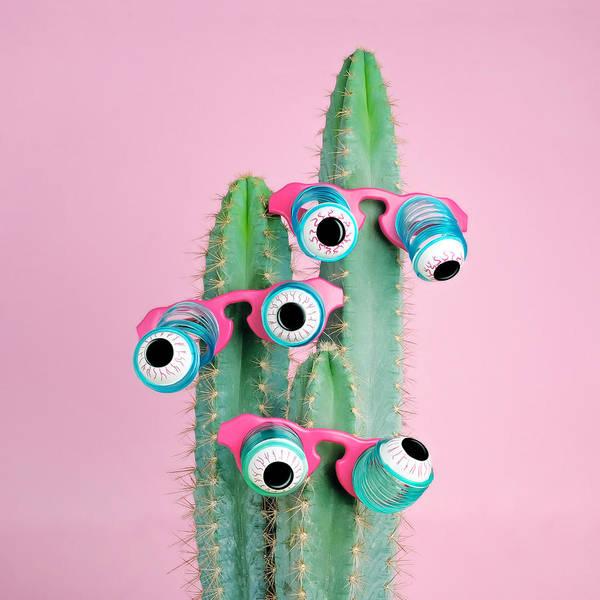 Photograph - Cactus Wearing Eyeball Glasses by Juj Winn