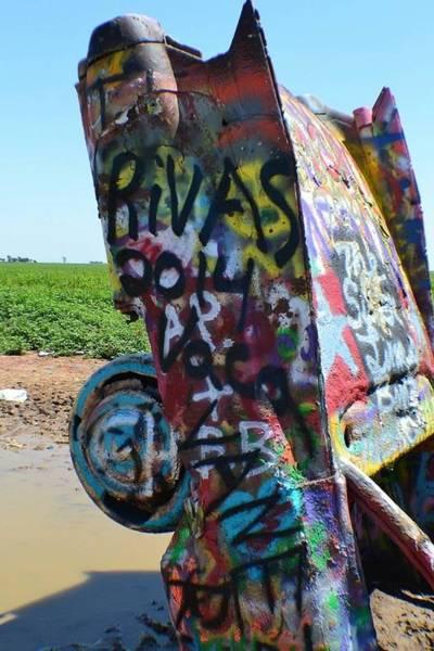 Michael Miller Wall Art - Photograph - Caddy 2 by Michael Miller