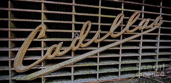 Photograph - Caddy by Ken Johnson