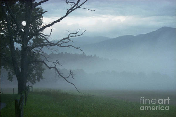 Photograph - Cades Cove Fog Sunrise by Teri Brown