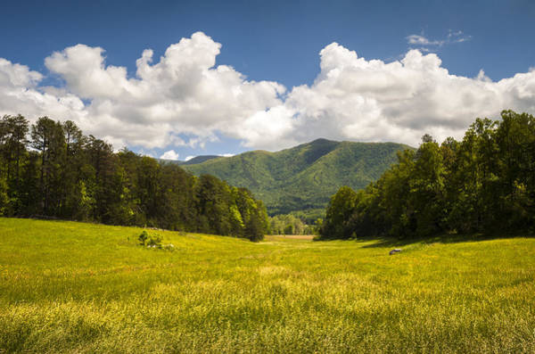 Cades Cove Photograph - Cades Cove Great Smoky Mountains National Park - Gold And Blue by Dave Allen
