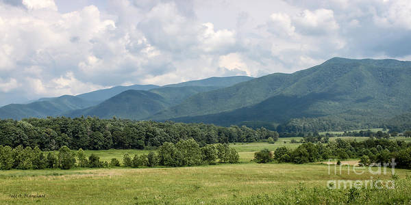 Photograph - Cades Cove In Summer by Todd Blanchard
