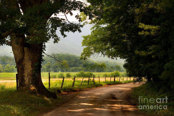 Photograph - Cades Cove Loop by T Lowry Wilson