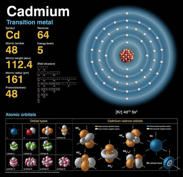 Isotope Photograph - Cadmium by Carlos Clarivan