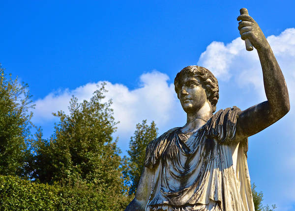 Photograph - Caesar On Blue Sky by Chris Alberding