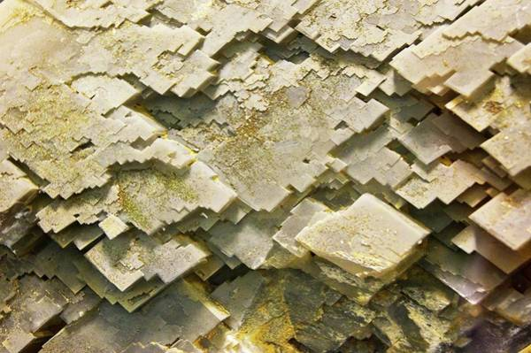 Carbonate Photograph - Calcite Crystal by Mark Williamson/science Photo Library