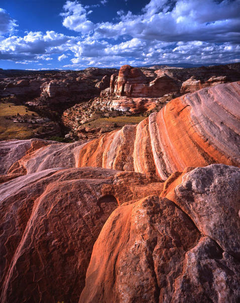 Photograph - Calf Creek Sandstone by Ray Mathis