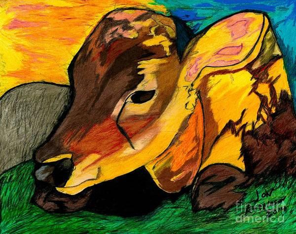 Drawing - Calf Enjoying The Sun by Jon Kittleson