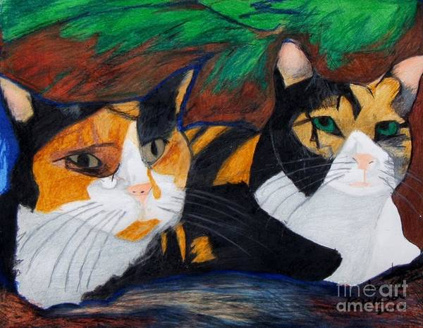 Drawing - Calico Cats by Jon Kittleson