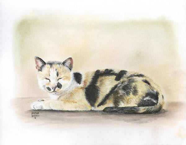 Calico Kitten Wall Art - Pastel - Calico by Heather Gessell