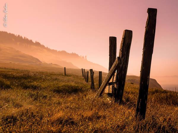Photograph - California by Alexander Fedin