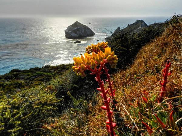 Photograph - California - Big Sur 006 by Lance Vaughn
