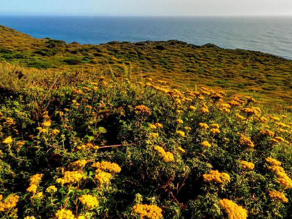 Photograph - California - Big Sur 007 by Lance Vaughn