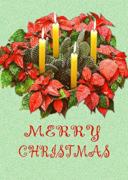 Print Photograph - California Cactus Christmas by Mary Helmreich