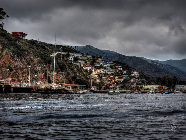 Photograph - California - Catalina Island 001 by Lance Vaughn