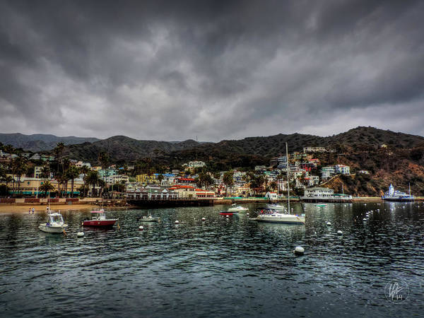 Photograph - California - Catalina Island 003 by Lance Vaughn