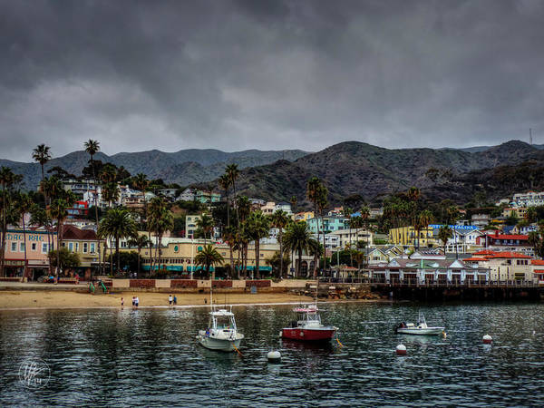 Photograph - California - Catalina Island 004 by Lance Vaughn