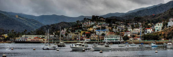 Photograph - California - Catalina Island 011 by Lance Vaughn