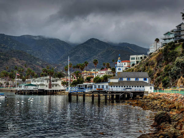 Photograph - California - Catalina Island 013 by Lance Vaughn