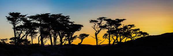 Photograph - California Dreaming  by Kevin  Dietrich