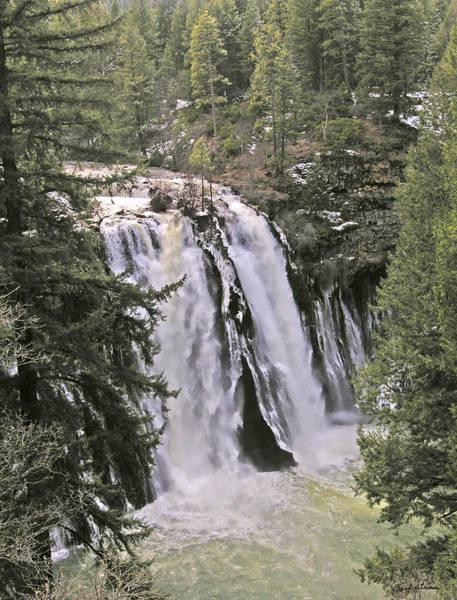 Photograph - California Falls by Rich Stedman