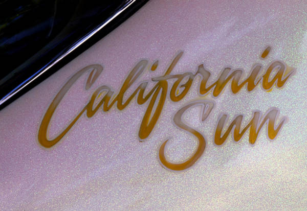 Wall Art - Photograph - California Sun by Thomas Young