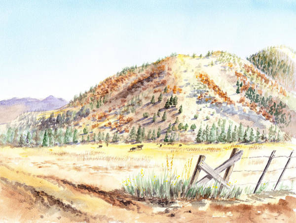 Painting - Californian Landscape Saint John Ranch Bald Mountain View Shasta County by Irina Sztukowski