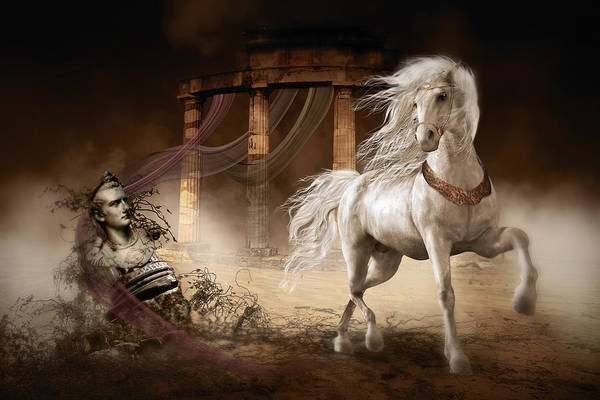 White Horse Digital Art - Caligula's Horse by Shanina Conway