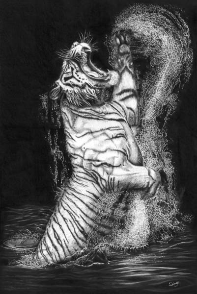 White Tiger Drawing - Call Of The Wild by Richard Savage