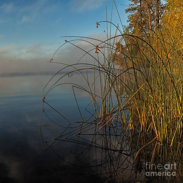 Photograph - Calm Morning by Beve Brown-Clark Photography