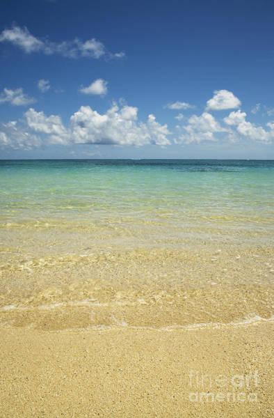 Photograph - Calm Ocean Shore by Charmian Vistaunet